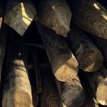 pali portoghesi